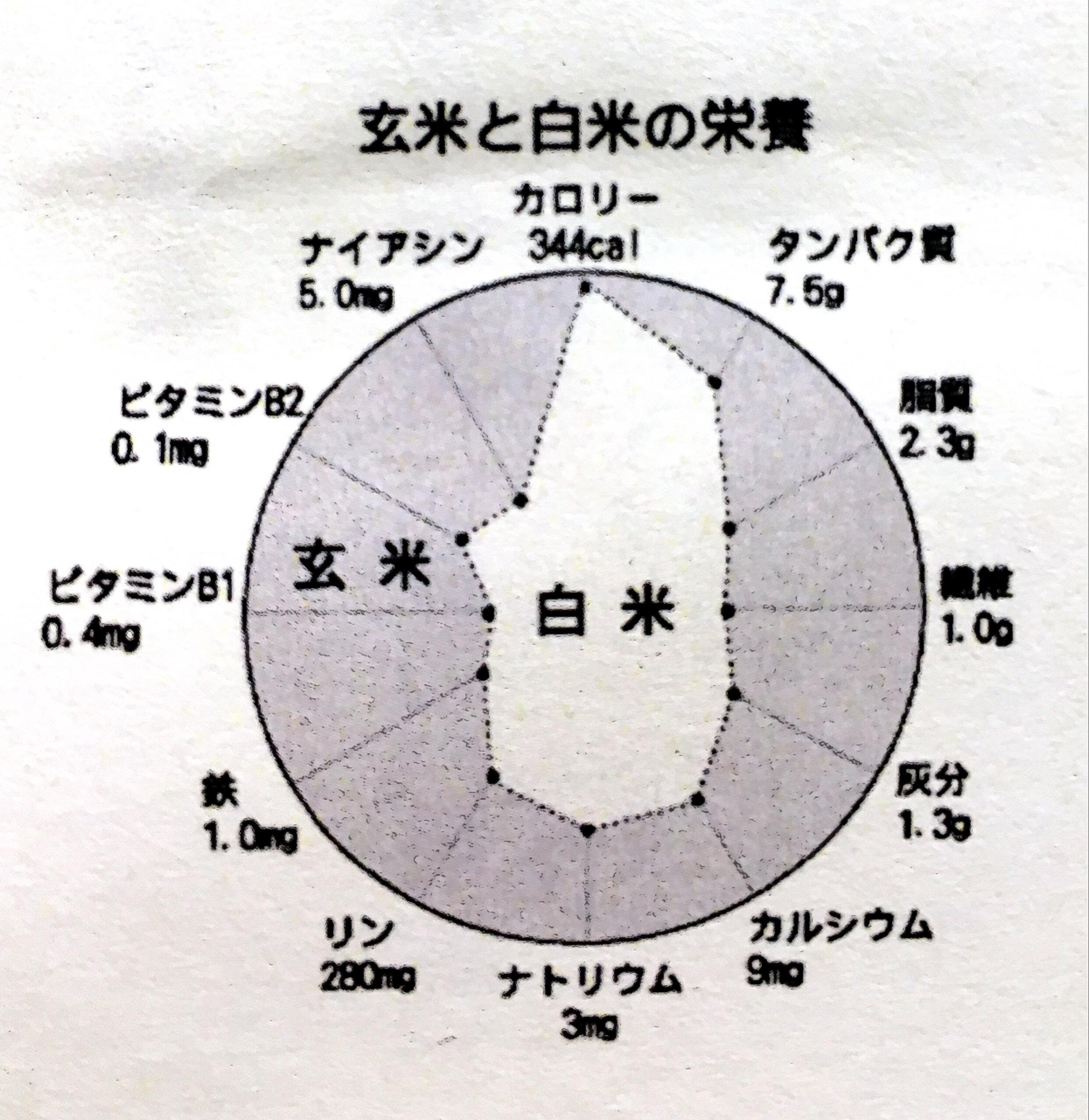 お米モニター07